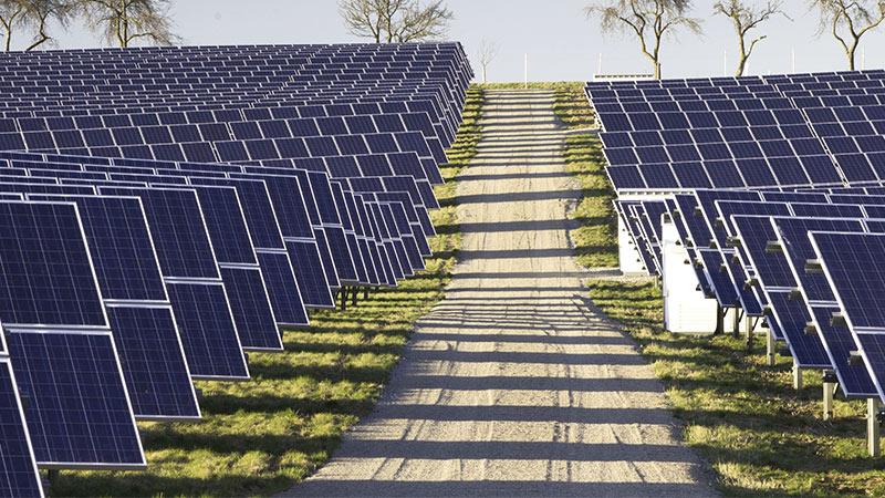 Sicherheit für Solarparks mit OPTEX-Technik